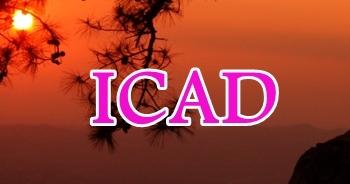 21 - 23 November 2019, ICAD