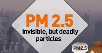 ผิวหนังของเราจะรับมืออย่างไรกับ PM 2.5
