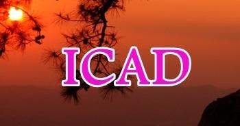 20 - 22 November 2020, ICAD