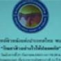 21 กันยายน 2553, กินยาสิวอย่างไรให้ปลอดภัย